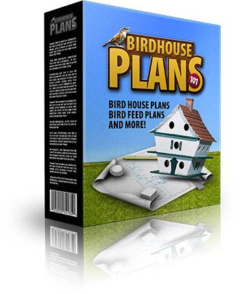 Bird House Plans 101