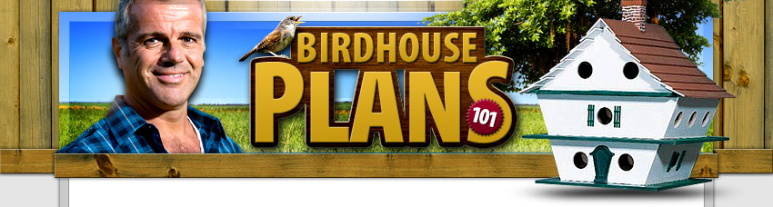 bird house plan  download